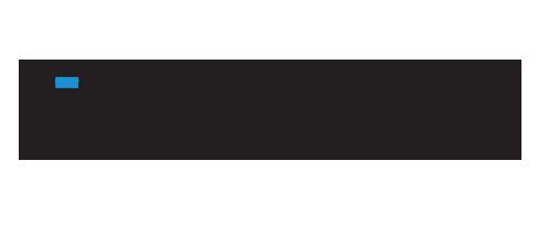 Worldwide Security Code Blue Logo
